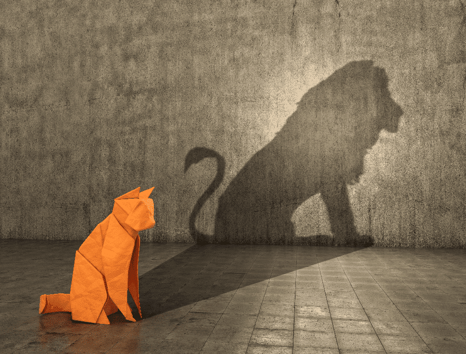 Katze bzw. Löwe