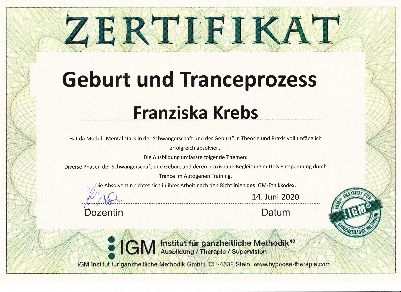 Diplom Geburt und Tranceprozess